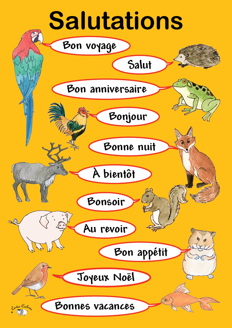 French Conversation Lessons Tes Teach